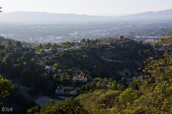 Mulholland_Hollywood-2